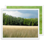 Photo Gallery image
